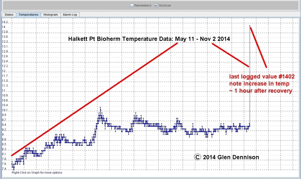 Halkett Bioherm Temp May 11 Nov2 2014 graph