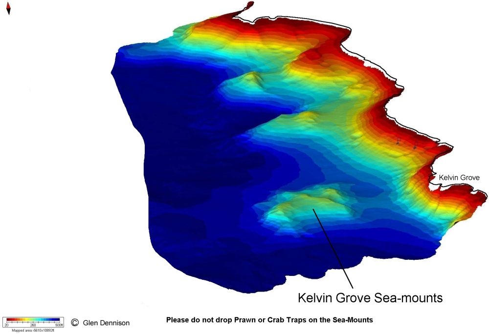 3D bathymetry map of Kelvin Grove seamount. Please avoid using bottom contact fishing gear (e.g., traps and cannon balls) in this area
