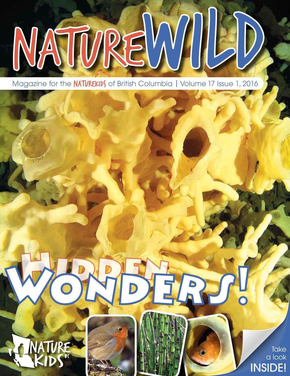 NatureWildSpongeCover